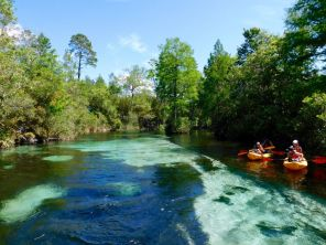 Le Weeki Wachee River State Park