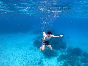 Plongée sous-marine sur l'île de Cozumel (Mexique)