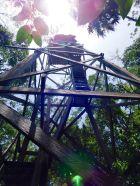 Tour d'observation dans la forêt avec vue sur la réserve de Sian Ka'an.