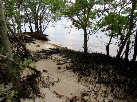 Ponce de Leon Park de Punta Gorda, en Floride
