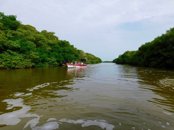 Le lagon de Rio Lagartos dans le Yucatan.