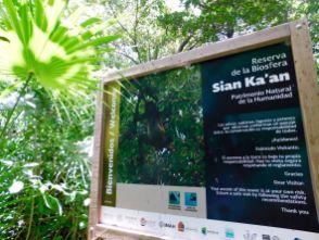 Sian Ka'an du côté de Muyil (au sud de Tulum)