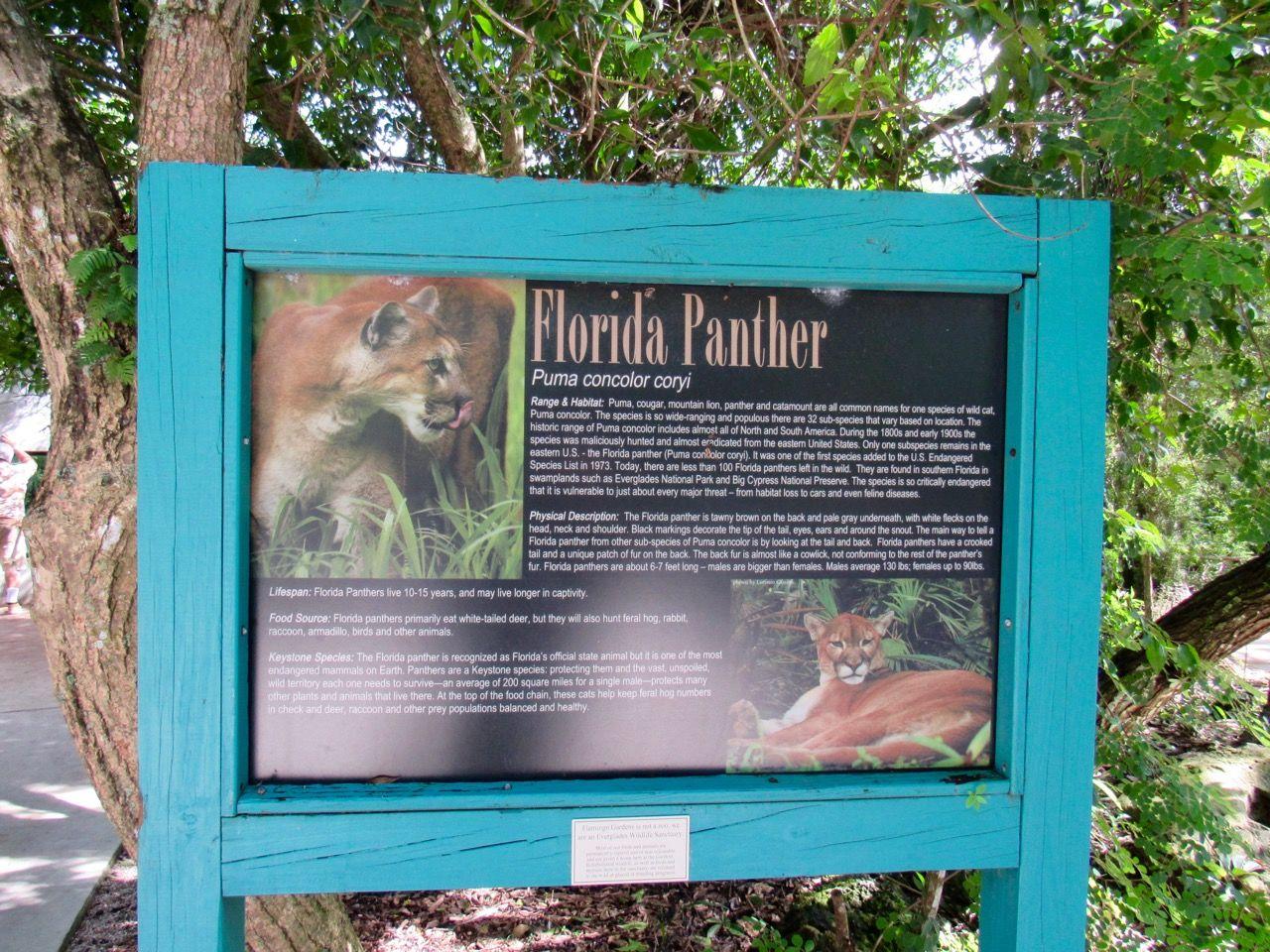Flamingo gardens de Davie en Floride
