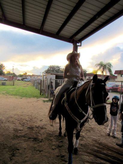 Quot Pro Rodeo Quot De Davie Le Grand Rod 233 O De Floride Le