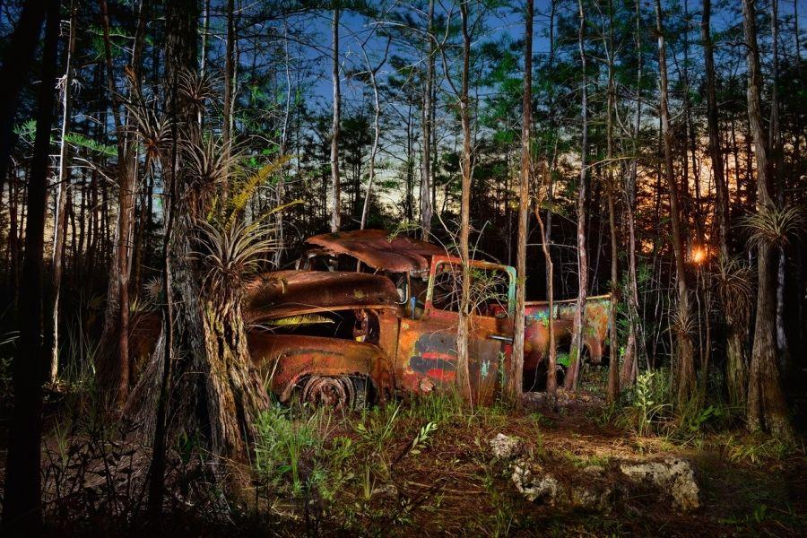 Voitures rouillées dans les Everglades