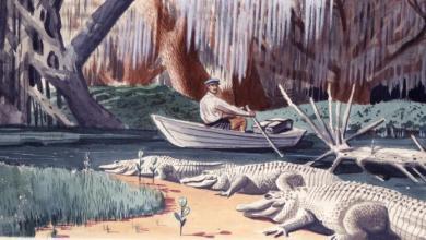 Photo of Expo à Boca Raton : «Imaginer la Floride, Histoire et Mythe dans le Sunshine State»