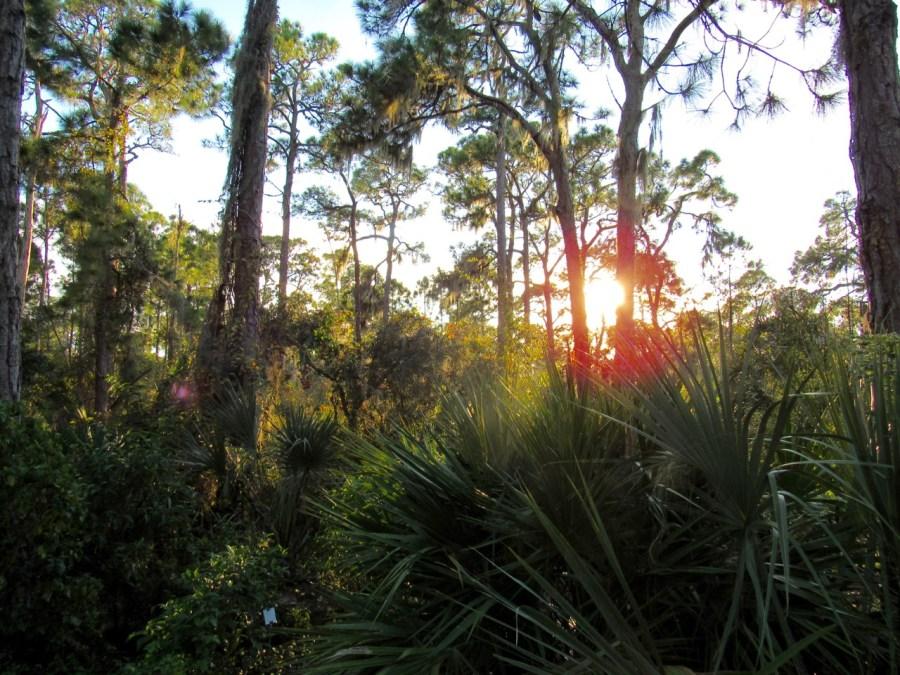 Coucher de soleil au Cedar Point Park à Englewood en Floride