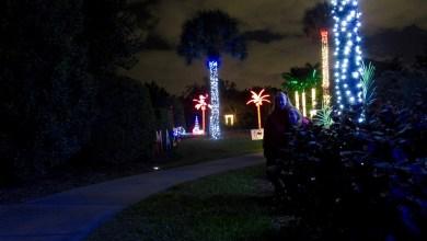 Photo of Les illuminations de Noël au Mounts Garden de West Palm Beach