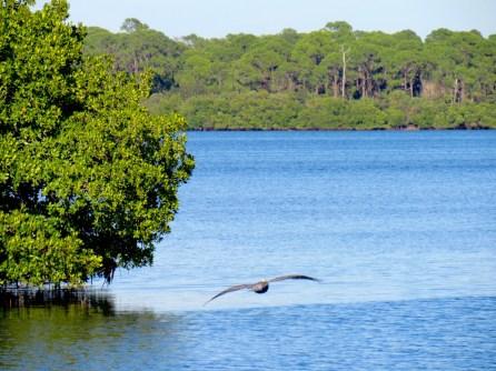 Blind Pass Park à Englewood en Floride