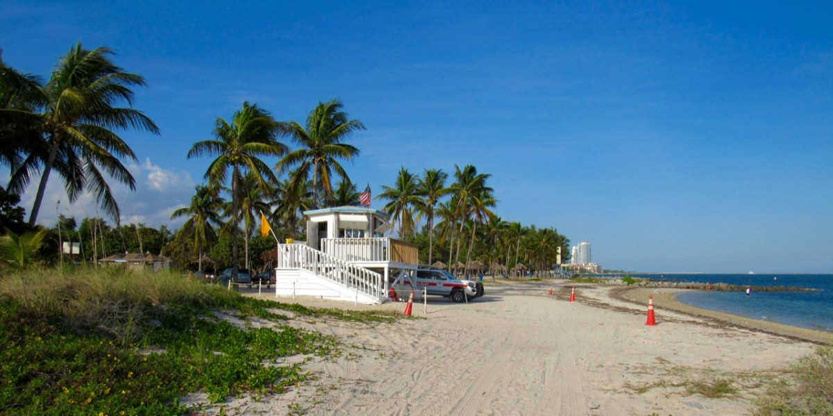 Le Courrier de Floride fête ses 5 ans : Interview de Gwendal Gauthier, son fondateur et directeur