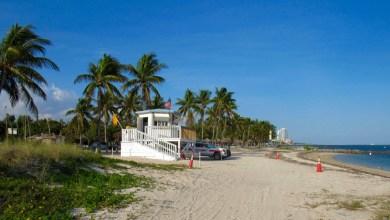 Photo of Le Courrier de Floride fête ses 5 ans : Interview de Gwendal Gauthier, son fondateur et directeur
