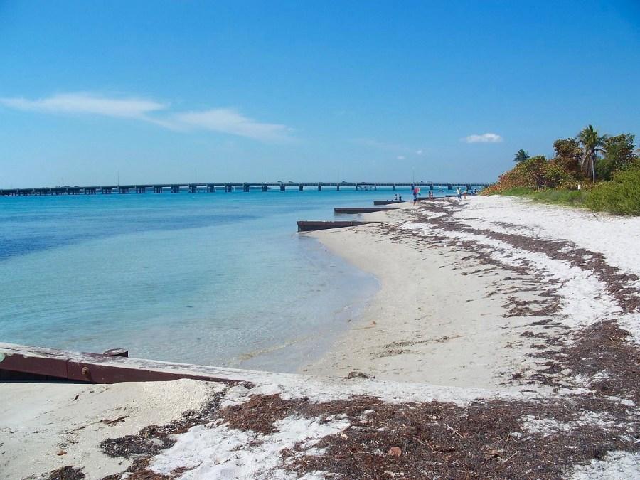 Plage de Virginia Key Beach Park, à Miami