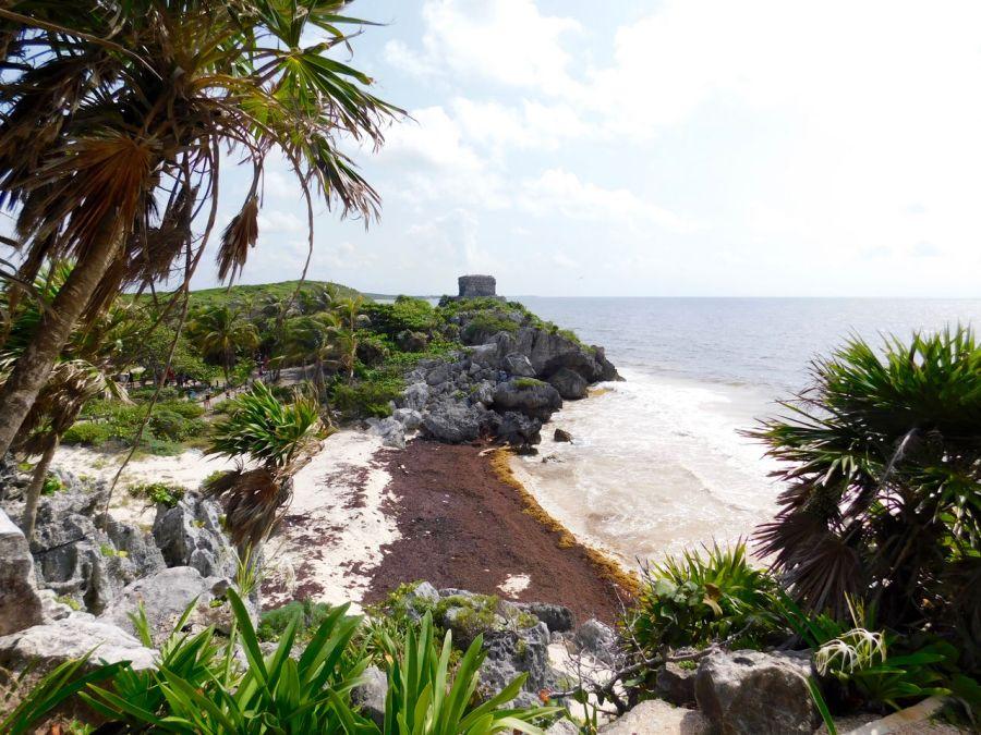 La plage de la ruine maya de Tulum (Mexique) avait été fermée en 2018 à cause des sargasses.