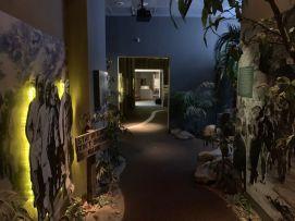 Musée National des Prisonniers de Guerre à Andersonville.