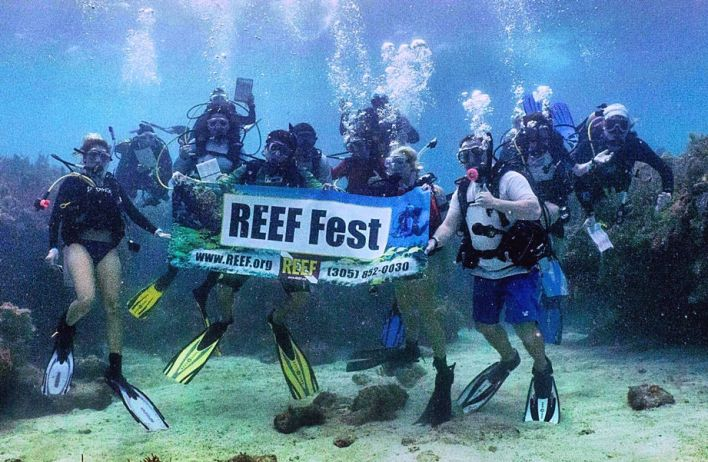 Reef Fest de Key Largo