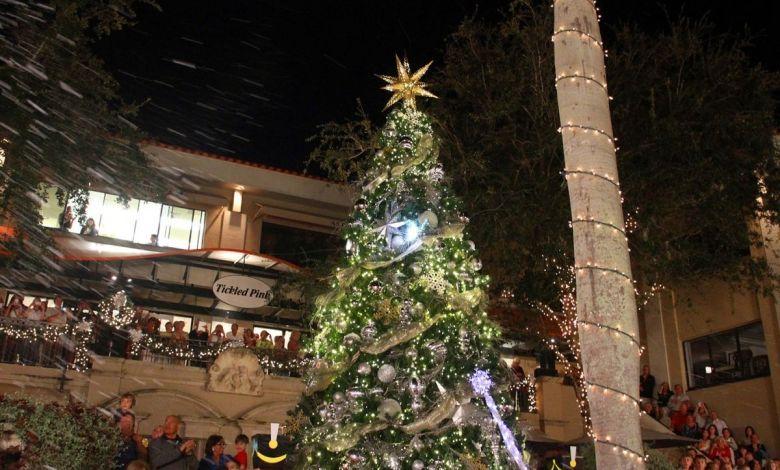 Illumination de l'arbre de Noël à Naples