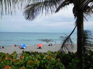 Plage de Red Reef - Snorkeling - Boca raton