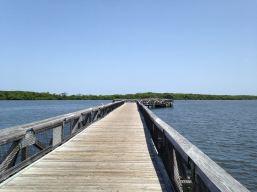 Palm Beach : John D. MacArthur Beach State Park, le lagon