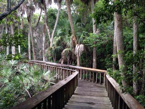 promenade en Floride