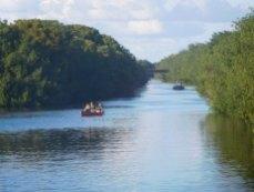 Rivière à Flamingo -Everglades national Park)