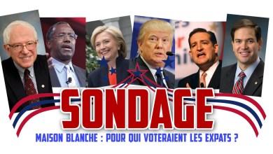 Sondages Maison Blanche 2016 : pour qui voteraient les expatriés français aux Etats-Unis