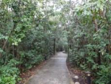 Mangrove - The Barnacle : parc historique à Coconut Grove - Miami - Floride