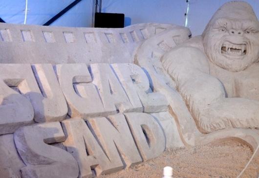 Le grand festival de chateaux de sables de St Petersburg Floria