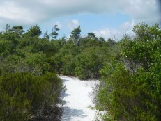 National Wildlife Refuge de Hobe Sound / Floride