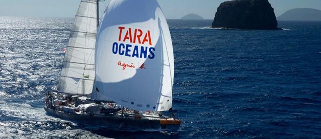 Expédition Tara à Miami
