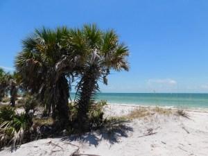 Caladesi Island, en Floride