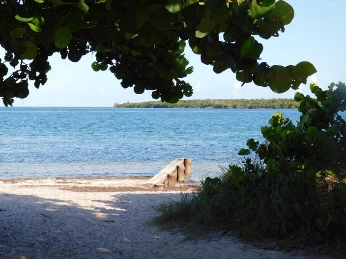 Virginia Key / Miami / Floride