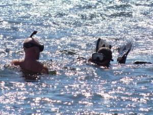 Plongée sous-marine au John Pennekamp Coral Reef State Park / Key Largo / Floride
