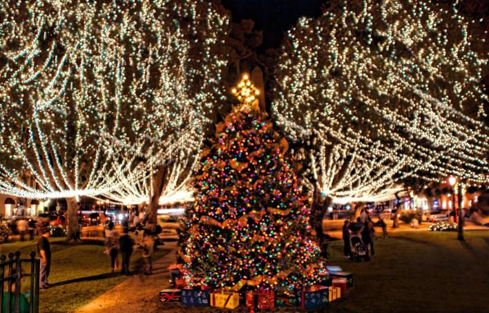 Un arbre de Noël magnifique est la pièce maîtresse de la « Plaza de la Constitucion » durant les Nuits de Lumières de St Augustine.