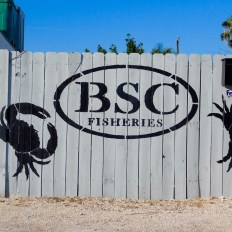 Les Lower Keys : Le Backcountry de Key WestLes Lower Keys : Le Backcountry de Key West