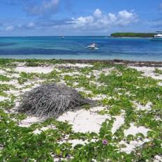 Terre de Bas, dans l'archipel de la Petite Terre