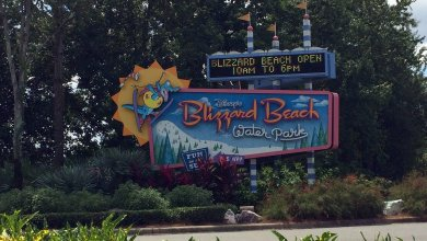 Photo of Visiter Disney's Blizzard Beach à Disney World Orlando