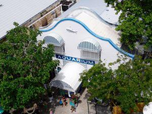 Aquarium de Key West