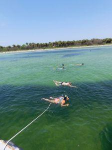 Snorkeling et plongée sur l'île d'Egmont Key en FlorideSnorkeling et plongée sur l'île d'Egmont Key en Floride