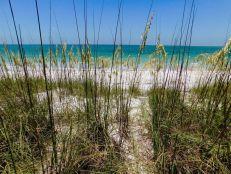 Plage sur l'île d'Egmont Key en Floride