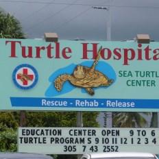 The Turtle Hospital (hôpital pour tortues) sur l'île de Marathon dans les Keys de Floride.