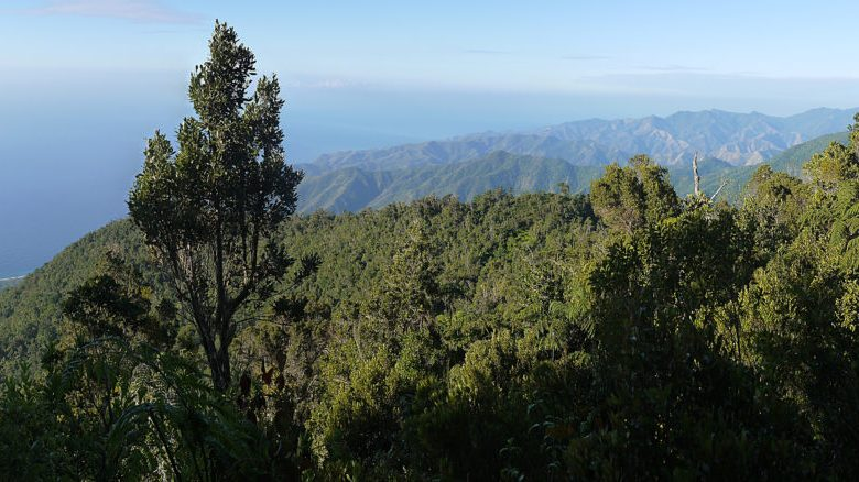 Sierra Maestra Cuba - Panorama