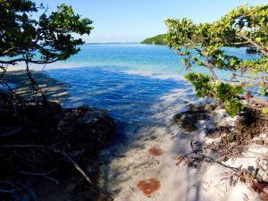 Plage sur l'île de Boca Chita Key, dans le Biscayne National Park