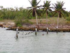 South Seas, la partie nord de l'île de Captiva.
