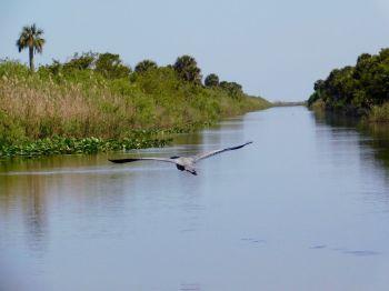 Canal d'accès au Lake Okeechobee à Moore Haven (Floride)