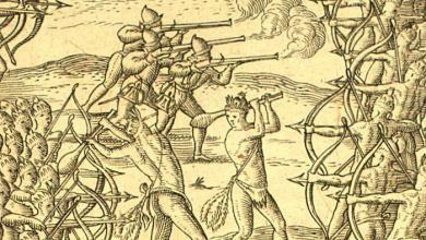 Photo of UNE HAINE ANCESTRALE (suite de notre roman historique «Terre d'Espérance» sur l'arrivée des Français en Floride)