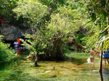 La cenote Azul près de Playa del Carmen au Mexique