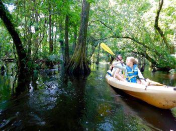 Kayak sur la Loxahatchee River (Floride)