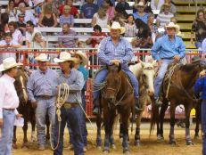 Cowboys at Davie Pro Rodeo in Davie, Florida