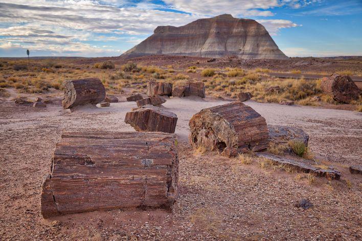 Petrified Forest National Park, en Arizona.