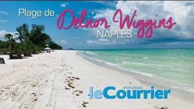 Photo of Vidéo : Delnor Wiggins, la plus belle plage de Naples (Floride)